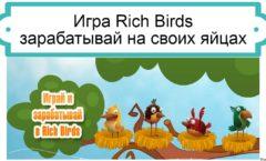 rich-birds