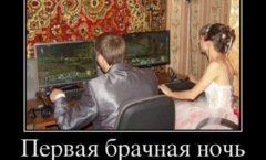 Причина развода -Компьютерные игры